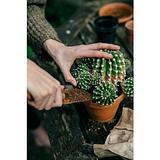Truella - Handmade bronze garden trowel